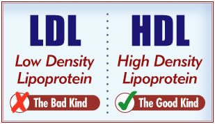 how to raise ldl cholesterol naturally